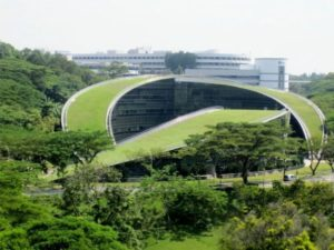 6465830_green-roofs-a-look-at-some-of-the-most_549b1dff_m